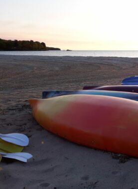 Row of kayaks on beach at sunset